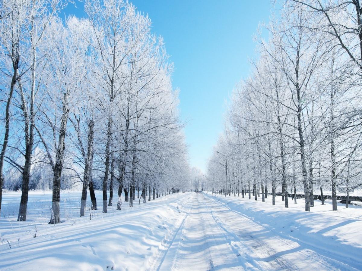 Бедствено положение обявиха в Монтана, Враца и Ловеч