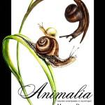 Анималия - една нестандартна изложба тръгва на турне