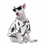 20150508-dog-post (1)
