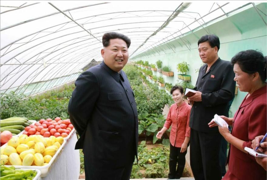 Всяко листо маруля за салатата на Ким Чен Ун – под микроскоп
