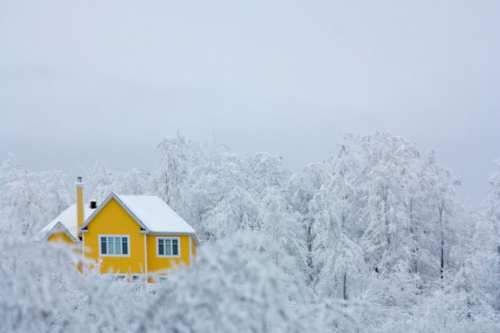 5372410-1000-1450697387-winter