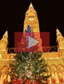 Коледен базар Виена