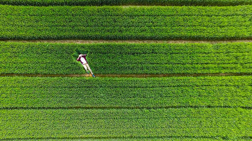 best-drone-photos-2015-dronestagram-eric-dupin-49__880