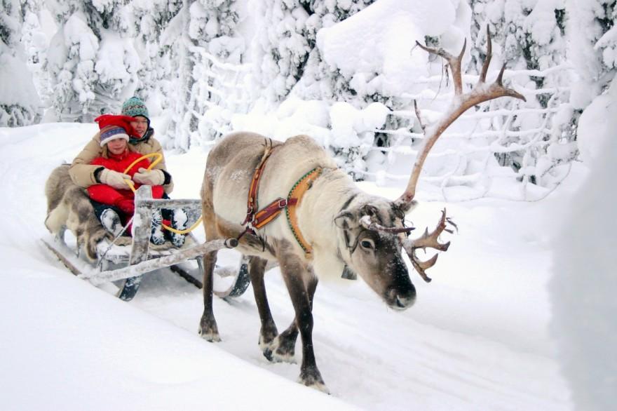 Коледа - прекарване