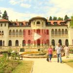 Дворецът Врана