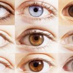 percentages-different-eye-colors_703879294564d82d