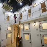 HOTEL DE 5 ESTRELLAS PARA GATOS EN MALASIA
