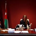 Посолството на Великобритания в Йордания назначи котарак на име Лорънс за главен мишелов.