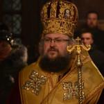 Видински митрополит