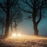 fog-3099719_960_720