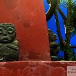 MEXICO-CITY-1-351qq-880x685