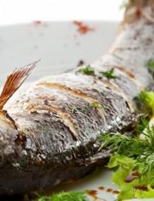 sea-bass-lavrak-grill1
