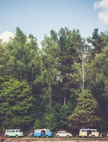trees-1246045_960_720