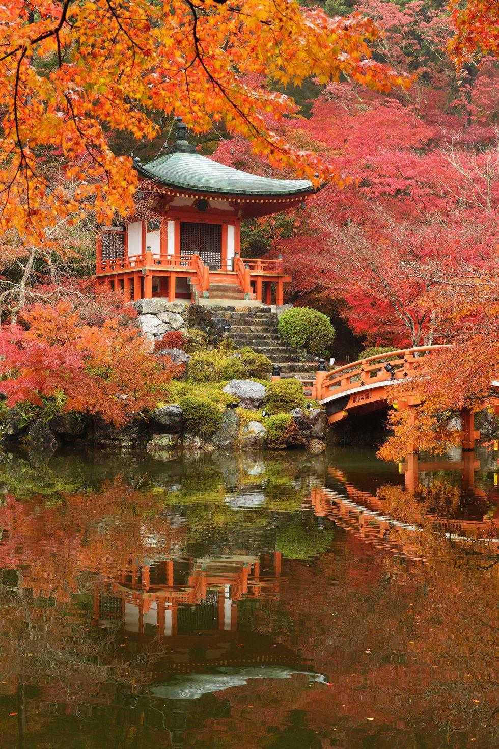 1497300321-daigoji-temple-japan
