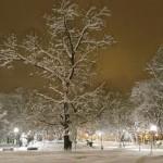 Сняг и Коледа