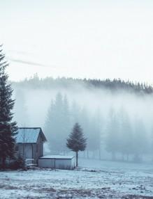 fog-1208290_960_720