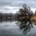 river-605735_960_720