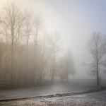fog-3907044_960_720
