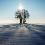 winter-1965902_960_720