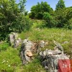 Из приказните гледки на екопът Земен - Пещерски манастир Свети Николай Летни