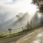 fog-4597940_1280