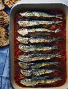 51205500_pepperonata-sardines_1x1